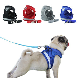 Adjustable, reflective harness with leash