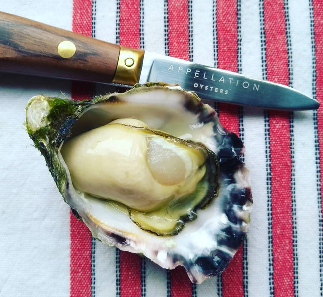 Oysters: you deserve proof of provenance
