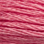 SIX-STRAND EMBROIDERY FLOSS (1)