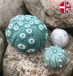 Embroidery kit: Sea urchins Ocean