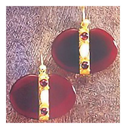 Sherwood Carnelian Earrings