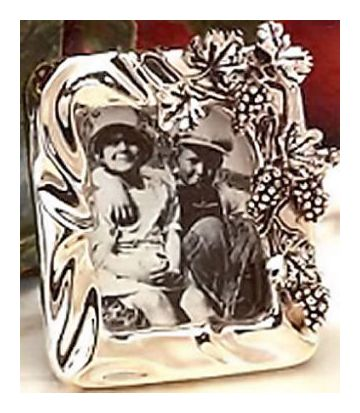 Pair Of Silver Grapevine Picture
