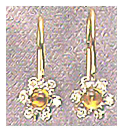 14k Citrine & Diamond Flower Earrings (.10ct)
