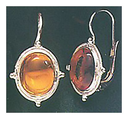 Amber Autumn Earrings
