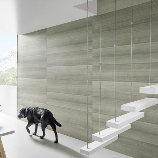 Dog on the background of the wall in the hall, made of Kerradeco Wood Silver Wall Panels