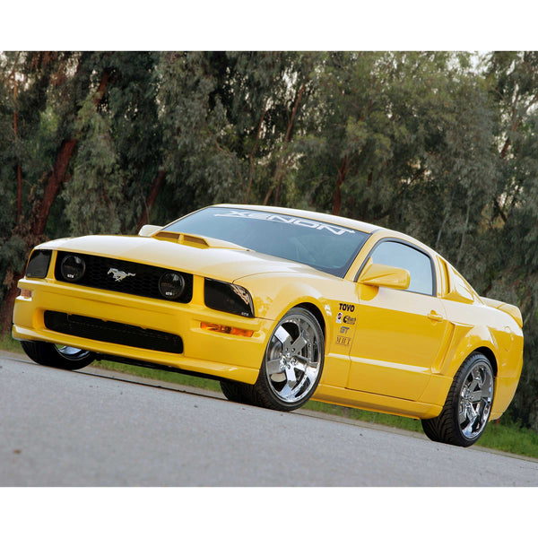 05-09 Ford Mustang (Coupe/Convertible - 4.0 - 4.6) Ground Effects Kit