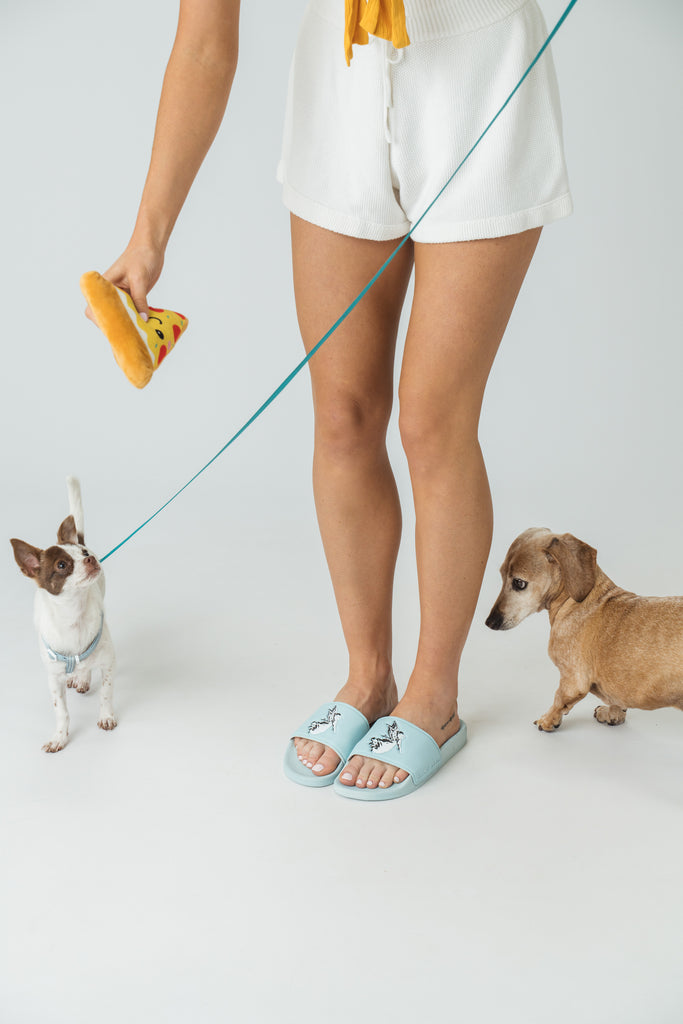 The Importance of Cruelty Free Footwear