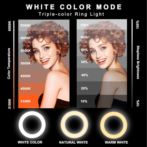Sebider® BG208 Ring Light - iMartine Store