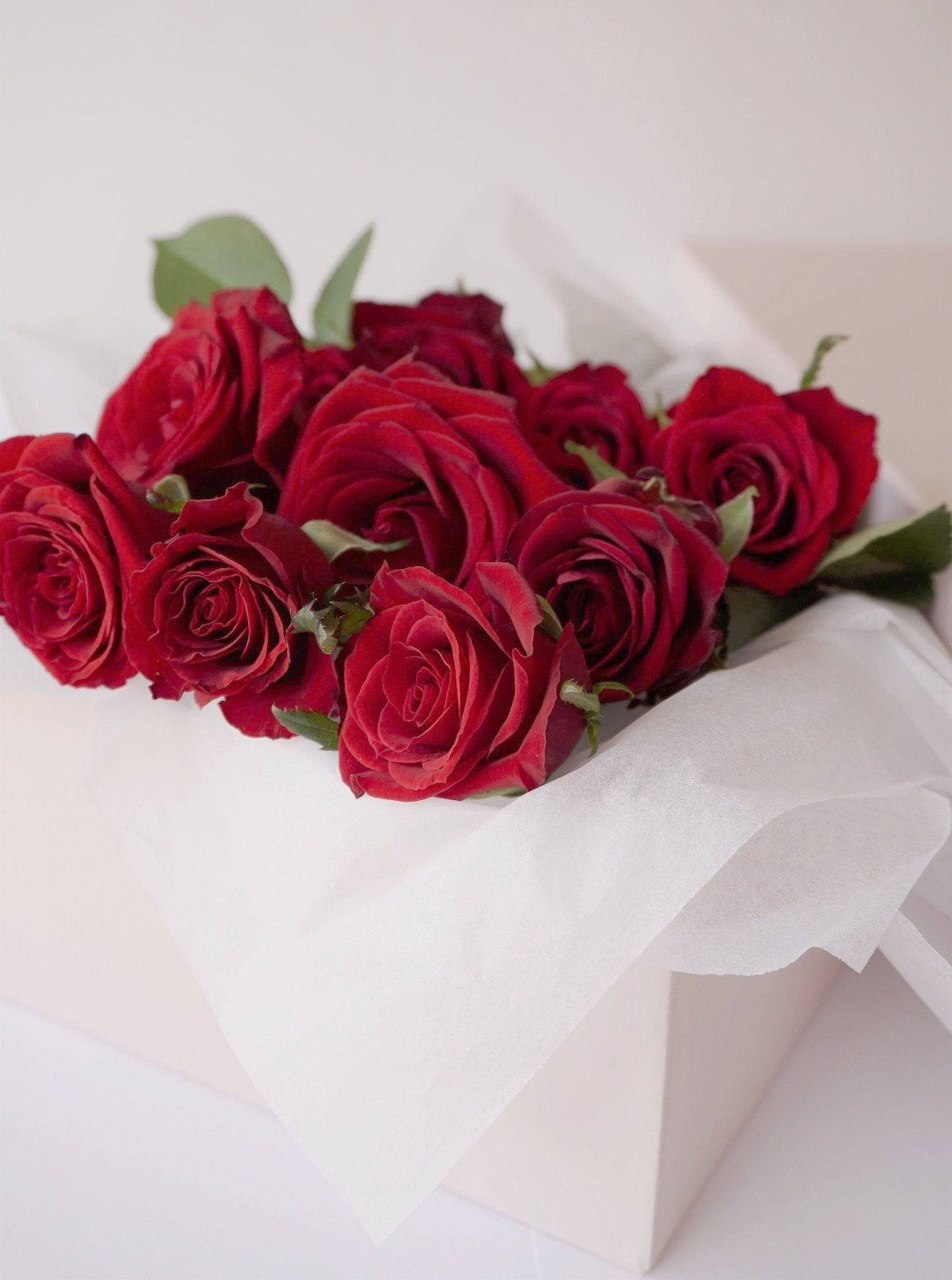 Dozen Red Roses | Valentines Day | Buy Flowers | Buy Roses | Zimzee Flowers | Auckland New Zealand