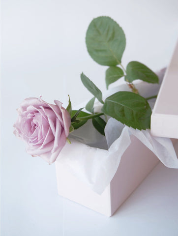 Single Lilac Rose | Valentines Day | Buy Flowers | Buy Roses | Zimzee Flowers | Auckland New Zealand