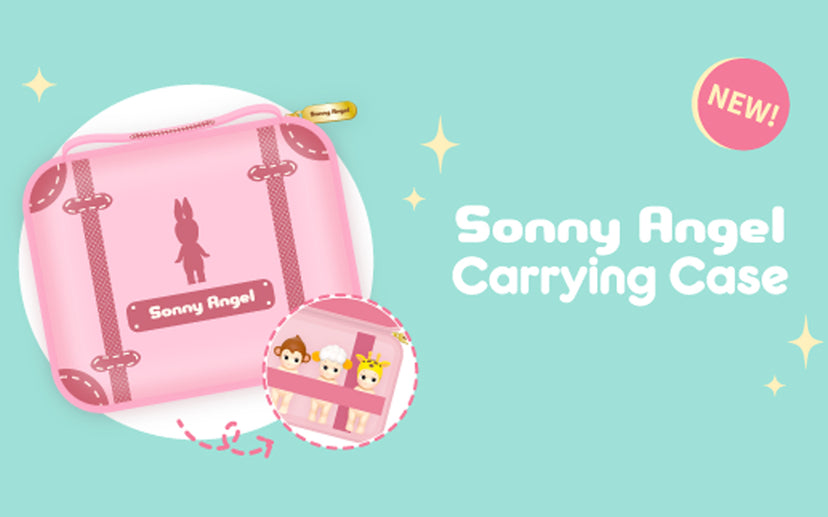 Carrying Case 2019