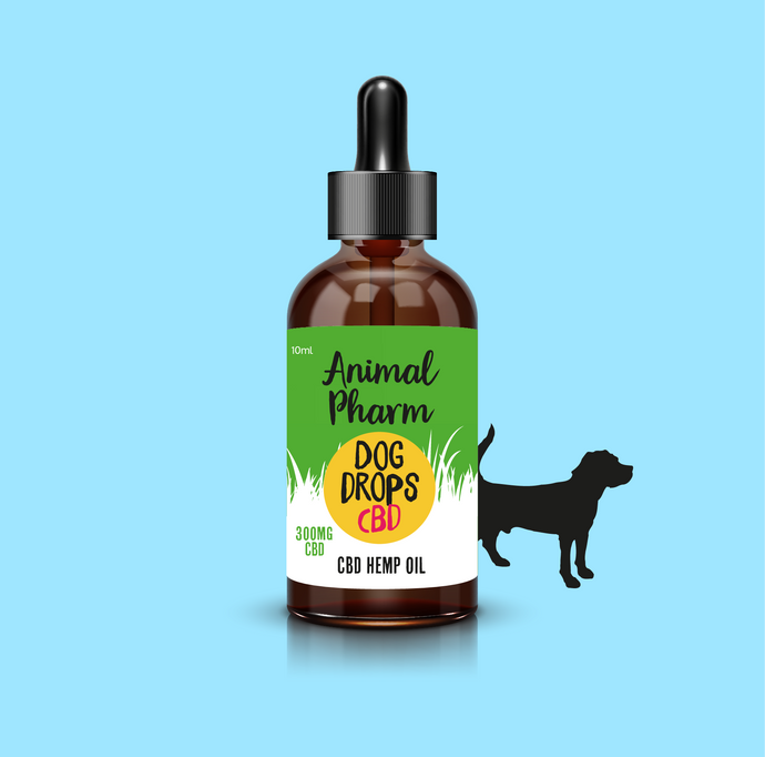 CBD Oil for Big Dogs