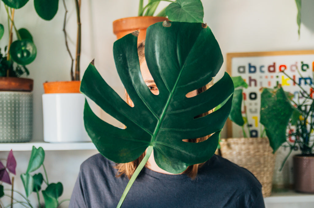 interview plant addict #10 Caroline
