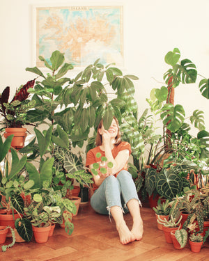 interview plant addict #7 _undermilkyway