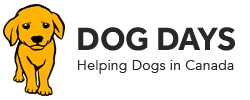Dog Days Clothing