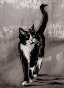 Cats - Green eyed - Greeting Card V_123