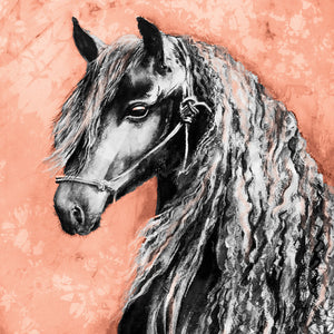 Horse - Friesian Stallion - Greeting Card - S_50
