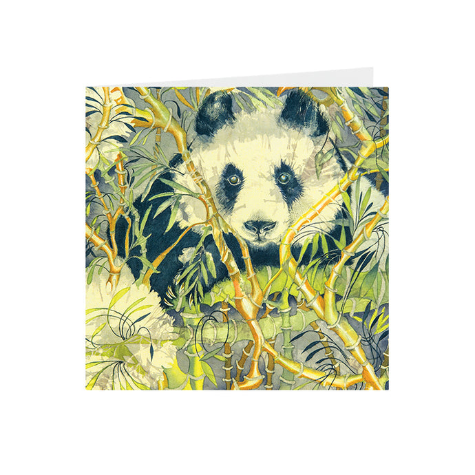 Panda Bear - Greeting Card -S_18