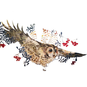 Owls in Wonderland - Flying Owl - Greeting Card - S_27