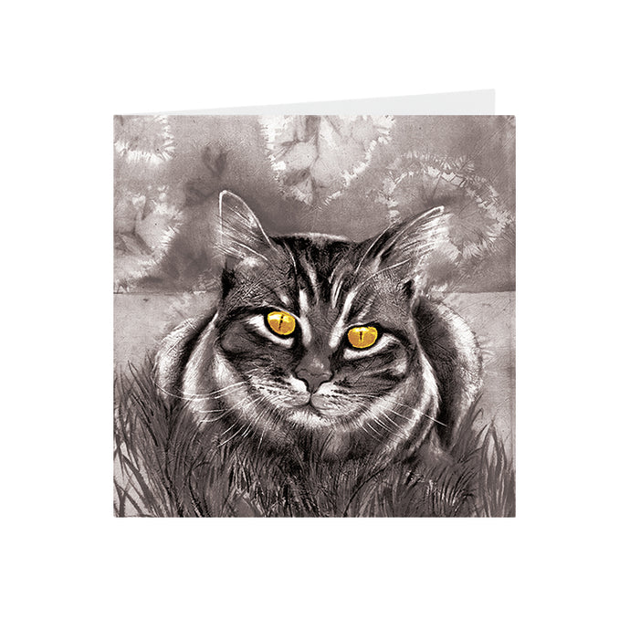 Cats - Yellow eyed - Greeting Card - S_47