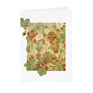 Owls in Wonderland - Hoot Owl - Greeting Card - V_08