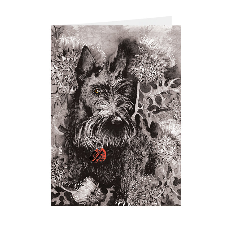 Dogs - Scotty - Greeting Card - V_117
