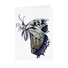 Butterfly - Greeting Card - V_47