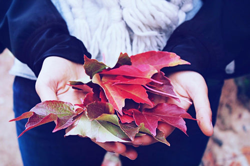 20 Things We Love About Fall
