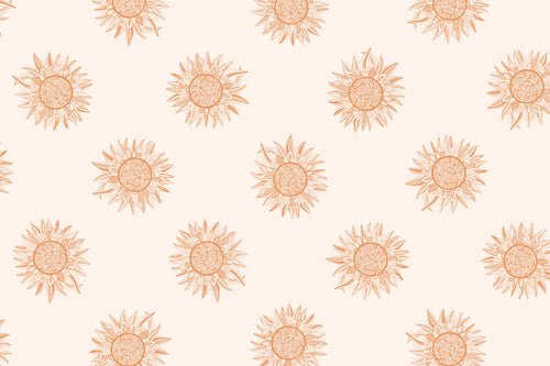 Download Rose Gold Spirit Desert, Our Print of the Month