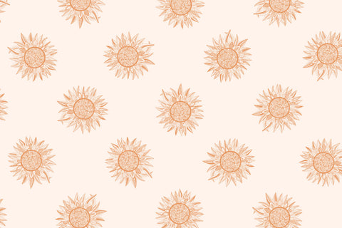 Free Print Wallpapers Rose Gold Spirit Desert Beyond The Craft The Sak