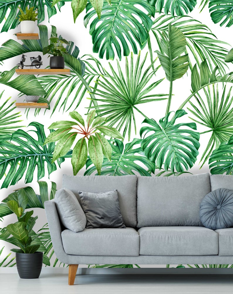 Tropical Leaves Monstera Palms Removable Wallpaper Coloritto Hand painted illustration isolated on white background. coloritto