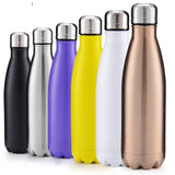 Stainless Steel Insulated Travel Bottle - 500ml