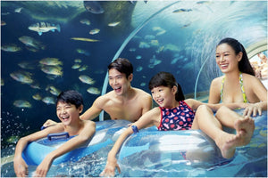 Adventure Cove Water Park™‎
