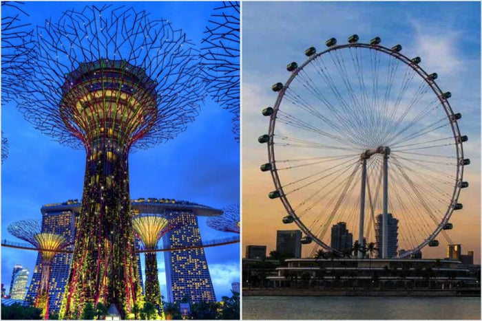💕Combo- Singapore Flyer + Gardens By The Bay