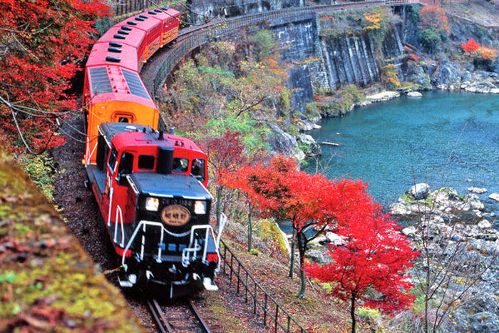 Sagano Romantic Train One Way Ticket