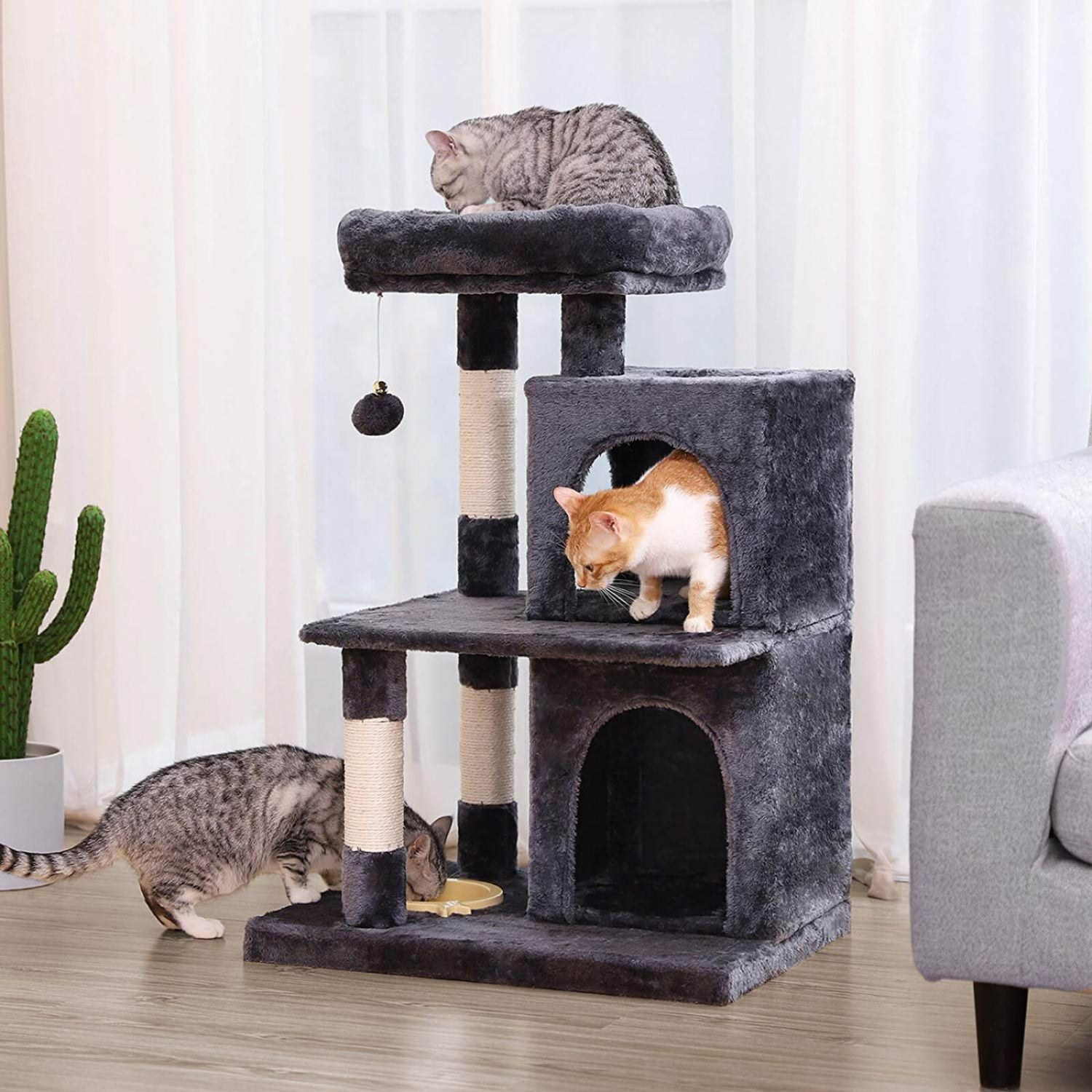 Two House Cat Tree