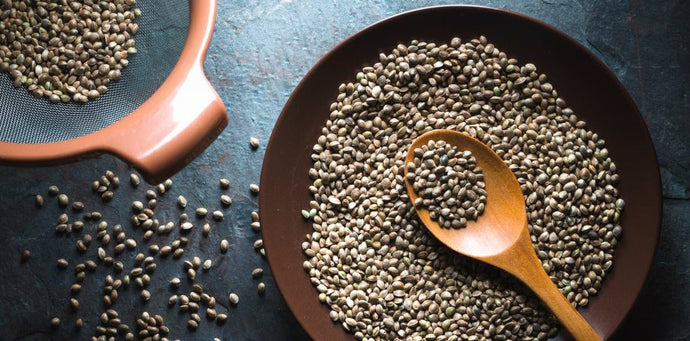 How are Hemp Seeds Processed?