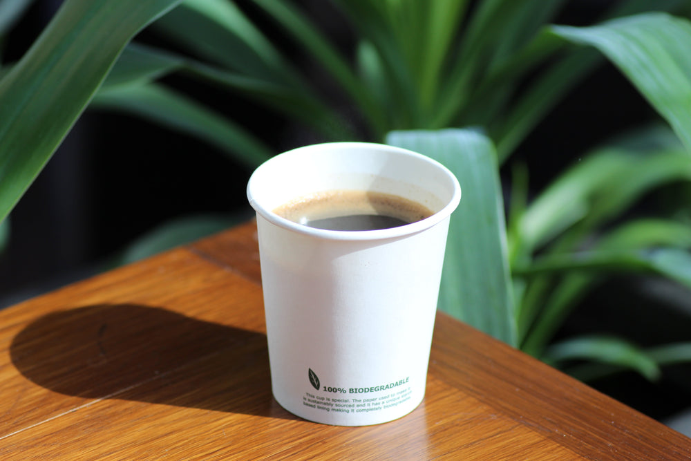 6oz Biodegradable Paper Cup (Single Wall) - 50 Pack - The Good Plate Company