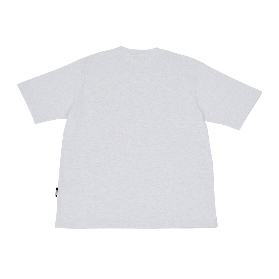SWAG LIFE T-SHIRT / ASH GRAY