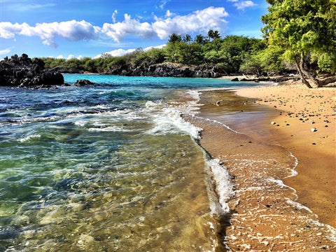 best Hawaii beaches