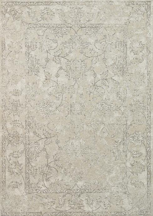 Bohemian Light Beige Distressed Boardered Rug