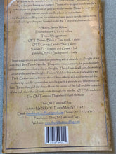 Load image into Gallery viewer, Punch Needle Pattern - Skinny Series Willow by Old Tattered Flag
