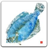 Fished Impression Coasters