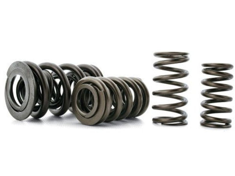 Ferrea Racing S54 Valve spring kit