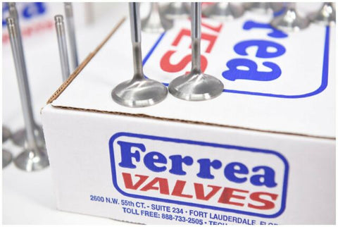 Ferrea Racing S55/N55 Competition Plus Valves