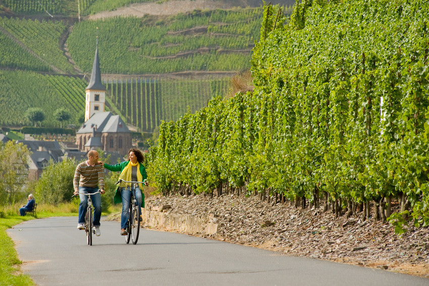cycle-paths-trails-adventure-seekers-germany-moselle