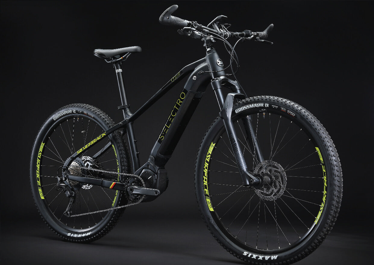 S-Electro Comp alloy electric bike
