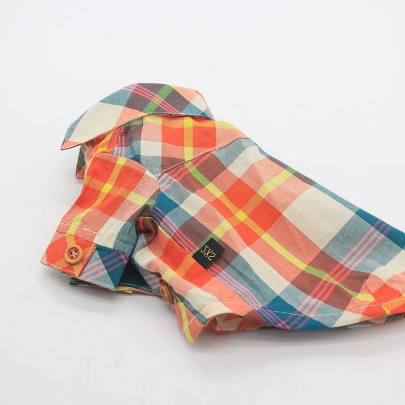Amber Checkered Shirt for dogs, dog clothes, small dog clothes, dogs clothing, dog clothes female, dogs clothes boy, Dogs Clothes For Small To Medium Dog, Liz's Wonderland, BowWow Shop - Top Dog Clothing Store