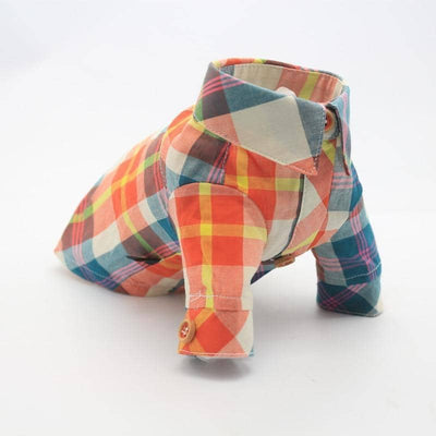 Amber Checkered Shirt for dogs, dog clothes, dogs clothes, dog clothing, small dog clothes, dogs clothing, dog clothes female, dogs clothes boy, Dogs Clothes For Small To Medium Dog, Liz's Wonderland, BowWow Shop - Top Dog Outfits Store