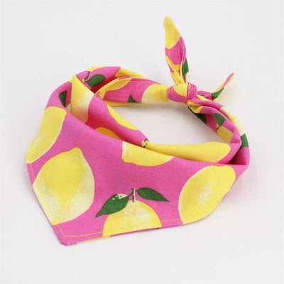 Dog Anchor & Lemon Dog Bandana Set | Small to Medium Dog Fashion Clothing | BowWow shop Online